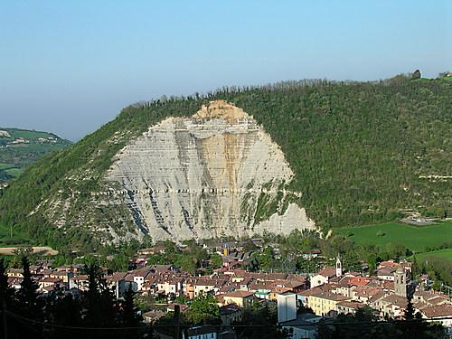 Galeata