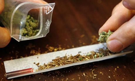 cannabis canna droga