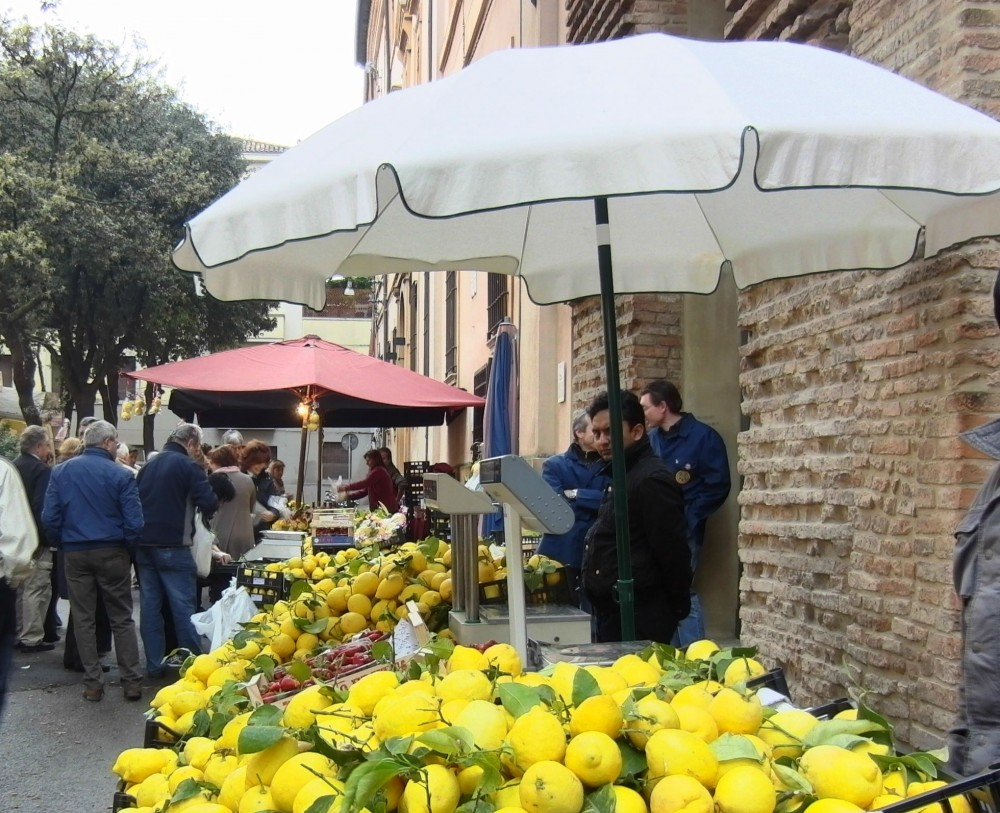 Festa San Pellegrino Forlì