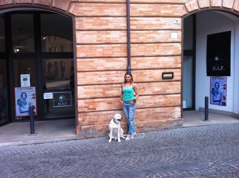 Galleria MAF Forlì