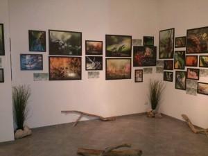 Mostra fotografica naturalistica di Francesco Lemma