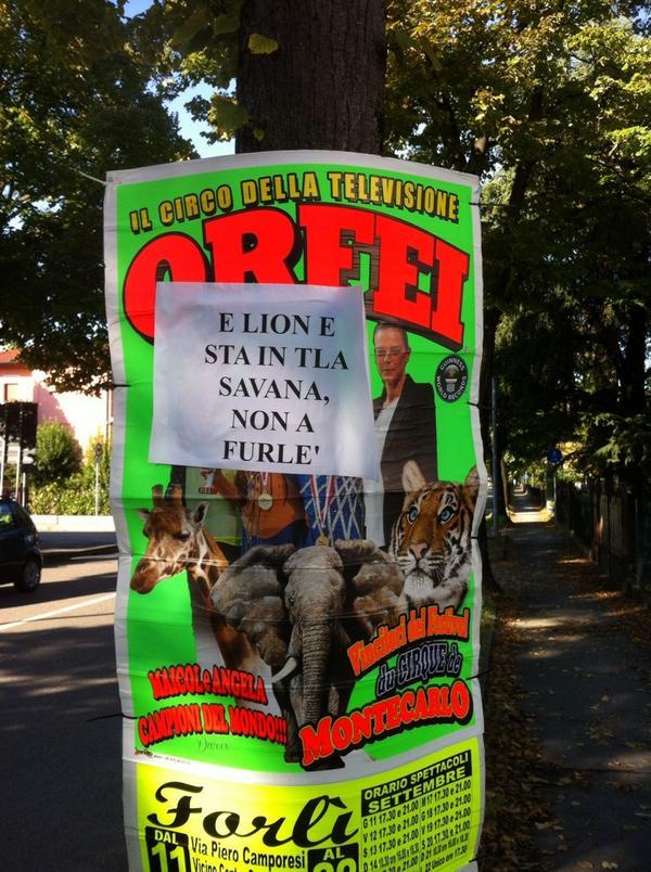 Il Circo a Forlì