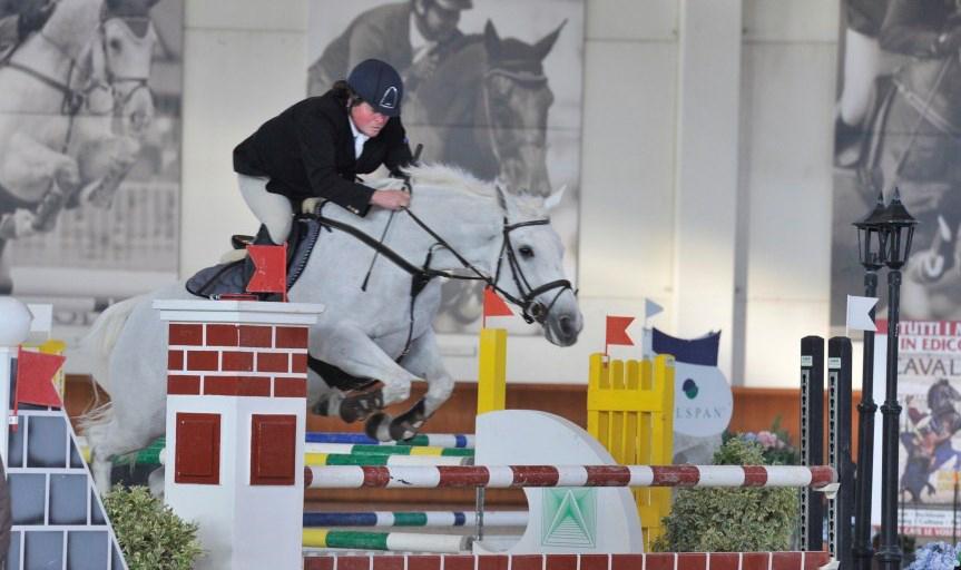 Cavallo equitazione salone del cavallo