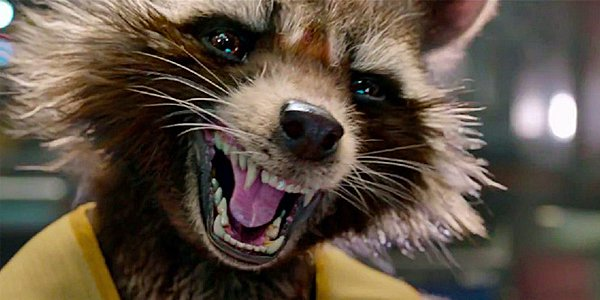 Rocket-Raccoon