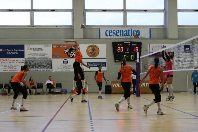 volley 2002