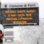NEVE a Forlì