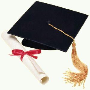 laurea borsa di studio